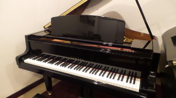 "Yamaha 5'3"" Grand Piano"