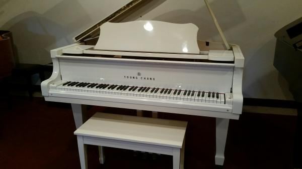 Young Chang G150 Grand Piano - STK# DG071754